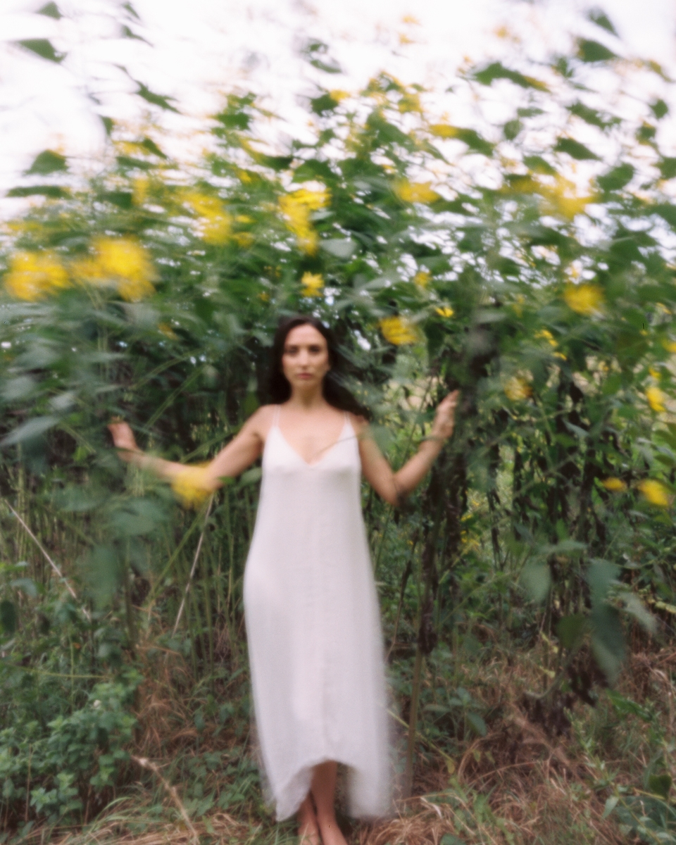 Anoush Anou and the Sunflowers